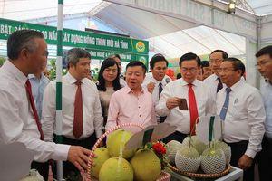 Phó Thủ tướng Vương Đình Huệ dự tổng kết 10 năm xây dựng nông thôn mới tại Hà Tĩnh