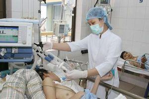 Đức, Nhật gia tăng chọn điều dưỡng Việt