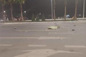 Quảng Ninh: Người đàn ông đi bộ qua đường bị xe tải đâm tử vong