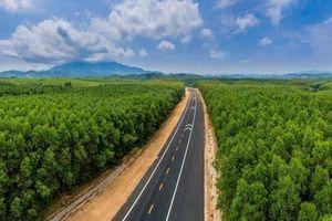 Dự án cao tốc Bắc - Nam: 'Không có chuyện chỉ định thầu'
