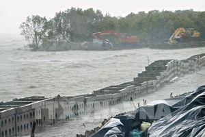 Sạt lở 'bủa vây' ở Đồng bằng sông Cửu Long - Bài 3: Vì đâu đất cứ 'trôi sông, đổ biển'
