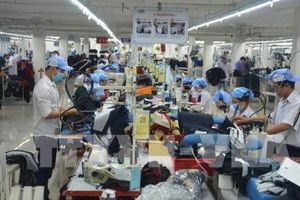 Sửa đổi Bộ luật Lao động cho phù hợp với tiêu chuẩn quốc tế