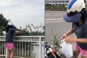 Camera ghi cảnh một phụ nữ trộm cây nơi công cộng
