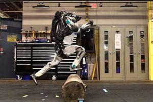 Robot Atlas có thể nhào lộn và tập thể dục như người