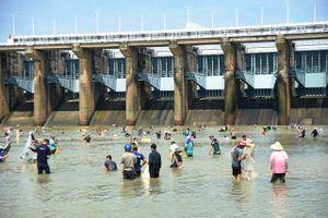 Thủy điện Trị An ngưng xả lũ để giảm triều cường trên sông Đồng Nai- Sài Gòn