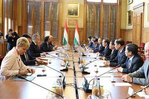 Phó Chủ tịch Quốc hội Phùng Quốc Hiển thăm cộng đồng người Việt tại Hungary