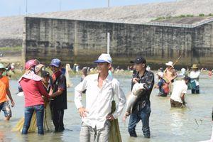 Cả ngàn người đổ xô bắt cá sau khi thủy điện đóng cửa xả lũ