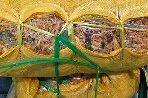 Tạm giữ gần 600 kg thịt bò, gà khô không rõ nguồn gốc tại Quảng Bình