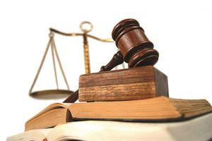 Công ty Đầu tư và Phát triển C&D bị xử phạt liên quan đến đấu thầu