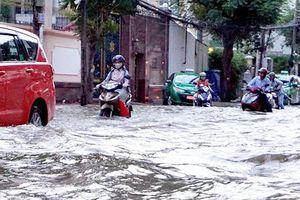 Cần giải pháp căn cơ chống ngập do triều cường ở TP Hồ Chí Minh