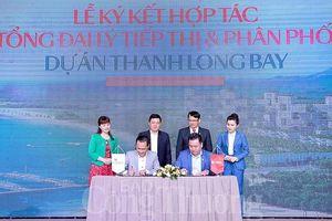 Nam Group hợp tác với DKRA Vietnam phân phối Dự án Thanh Long Bay