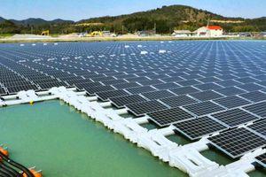 ADB tài trợ dự án điện mặt trời nổi lớn nhất Việt Nam