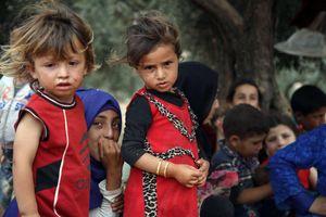 Syria: Ủy ban hiến pháp có thể giúp xây dựng lòng tin