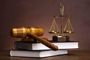 Đừng 'làm thay' cơ quan thực thi pháp luật
