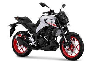 Yamaha MT-03 2020 trình làng với giá rẻ bất ngờ, quyết so kè Honda CB300R