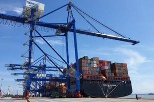 Thủ tướng duyệt chủ trương đầu tư 2 bến cảng container quốc tế Hải Phòng