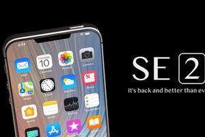 iPhone giá rẻ SE2 sẽ ra mắt đầu năm 2020