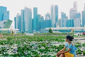 Singapore: Hiện đại là nhân sinh