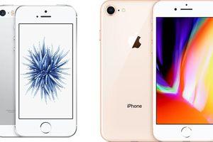 Kuo: Apple sẽ ra mắt iPhone SE 2 vào đầu năm 2020