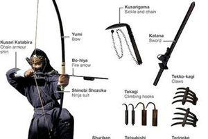 Hé lộ những sự thật thú vị về Ninja