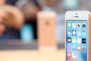 Chiếc iPhone mới sẽ ra mắt vào đầu năm 2020 có gì đặc biệt?