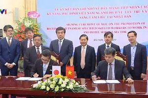 Nhật Bản mở rộng tiếp nhận lao động Việt Nam chất lượng cao