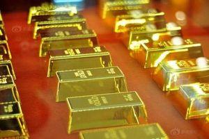 Chuyên gia, giới đầu tư dự báo giá vàng sẽ tăng trong tuần này