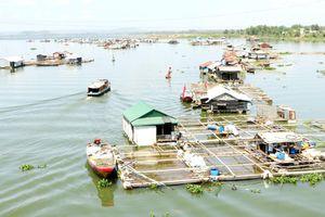 Các dự án điện mặt trời trên lòng hồ Trị An: Lo lắng tác động xấu đến môi trường