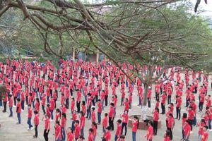 Hà Giang: 50% trường THCS có chương trình giáo dục hướng nghiệp vào năm 2020