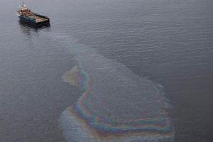 Brazil khẩn trương điều tra nguyên nhân ô nhiễm dầu ở 125 bãi biển
