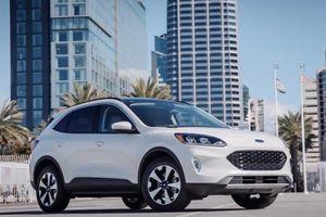 Ford Escape 2020 bắt đầu nhận cọc, giá bán dự kiến gần 1 tỷ đồng