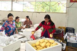Thúc đẩy tăng trưởng xuất khẩu nông sản