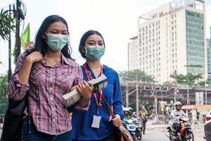 Ðông - Nam Á đối phó ô nhiễm từ cháy rừng