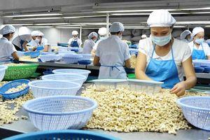 Thêm công cụ hỗ trợ doanh nghiệp xuất khẩu vào ASEAN