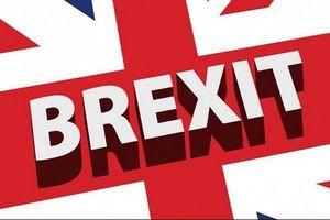 88% hàng nhập khẩu vào Anh được miễn thuế trong trường hợp không có thỏa thuận Brexit