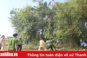 Huyện Hoằng Hóa: Tổ chức đợt cao điểm chỉnh trang cảnh quan, vệ sinh môi trường