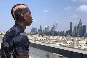 Nỗ lực tập luyện, Paul Pogba hy vọng kịp dự đại chiến MU - Liverpool
