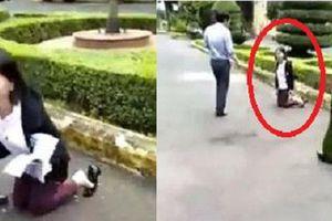 Vì sao các khiếu nại của 'cô giáo quỳ gối' ở Đắk Lắk đều bị UBND tỉnh Đắk Lắk bác bỏ?