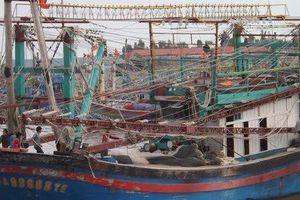 'Ăn chặn' tiền bảo hiểm của ngư dân tử vong, trường phòng bảo hiểm bị bắt