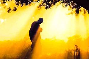 Phật dạy: Số mệnh con người sớm được an bài, nhưng đây mới là điều quyết định tương lai của bạn