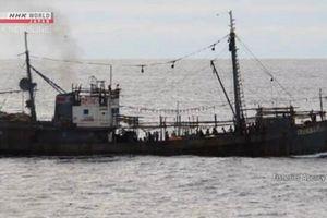 Nhật Bản kháng nghị Triều Tiên về vụ va chạm tàu trên biển