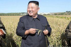 Ông Kim Jong Un tái xuất hiện, nhân viên dưới quyền không dám cười to