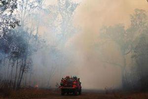Giặc lửa hoành hành tại Australia, thiêu rụi hàng chục ngôi nhà