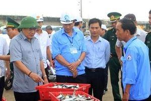 Chung tay tháo gỡ 'thẻ vàng' EC, giúp kinh tế biển phát triển bền vững