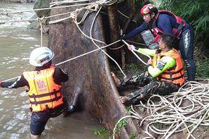 Thái Lan dùng lưới lớn vớt xác đàn voi ngã chết ở thác tử thần