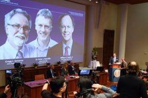 Mùa giải Nobel 2019: Lộ diện dần những anh tài