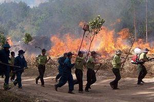 Tăng cường phòng cháy, chữa cháy rừng phòng hộ, đặc dụng