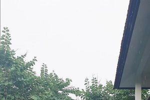 Ảnh đời thường nóng bỏng của vợ cũ Hồ Quang Hiếu – người được cho đang hẹn hò Quang Lê
