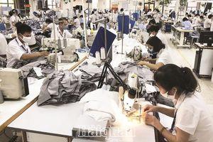 Dệt may Việt Nam trước thử thách thương mại điện tử