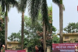 Nhận vé trận Việt Nam - Malaysia chưa ấm tay, thương binh trao ngay cho 'cò vé'